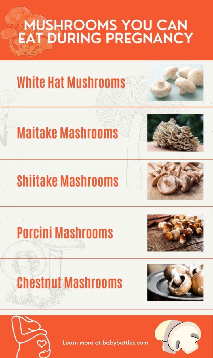 Mushrooms you can eat during pregnancy infographic